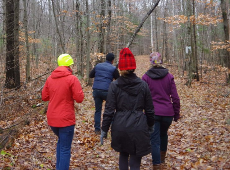 Hiking cats trail