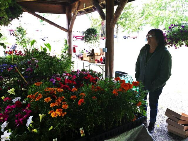 Lamoy's Produce and Greenhouses filled their Farmers' Market table with flowers, veggie plants, perennials and succulents as the pavillion opened for the first time this season last Friday. (Photo by Kim Dedam)