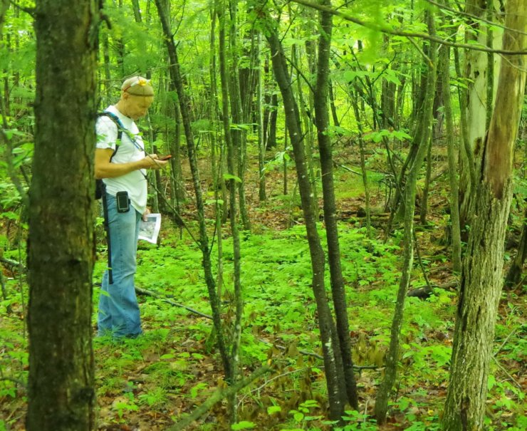 Trail Steward Bill Amadon has the Hemlock Hill Trail in tip-top shape.
