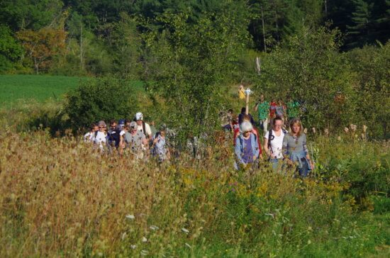 Hikers on the Farm-to-Fest hike will walk past lush fields with early autumn wildflowers before joining the Adirondack Harvest Festival on the Essex County Fairgrounds in Westport.