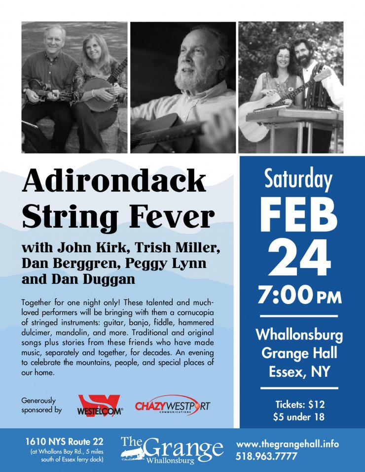 Adirondack String Fever Flyer