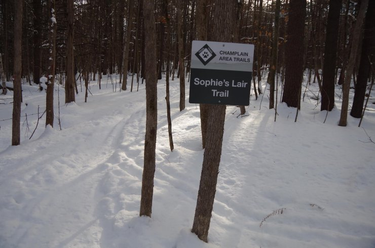 CATS Sophie's Lair Trail offers excellent cross-country skiing and snowshoeing. A ski/snowshoe adventure is planned for February 17 at 9:15 a.m.