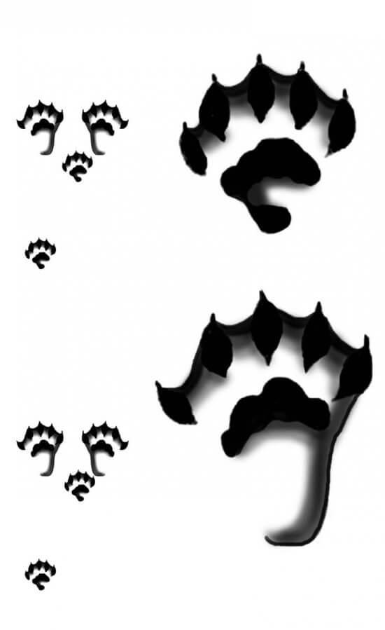 Otter Track Pattern (Credit: Sheri Amsel, exploringnature.org)