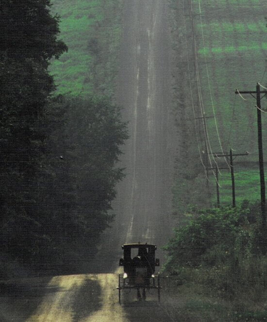 Amish buggy in rural area
