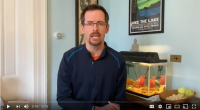 April 4 Video Update from the Town of Essex Supervisor on COVID-19