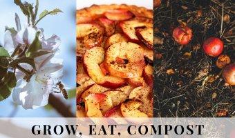 International Compost Awareness Week,