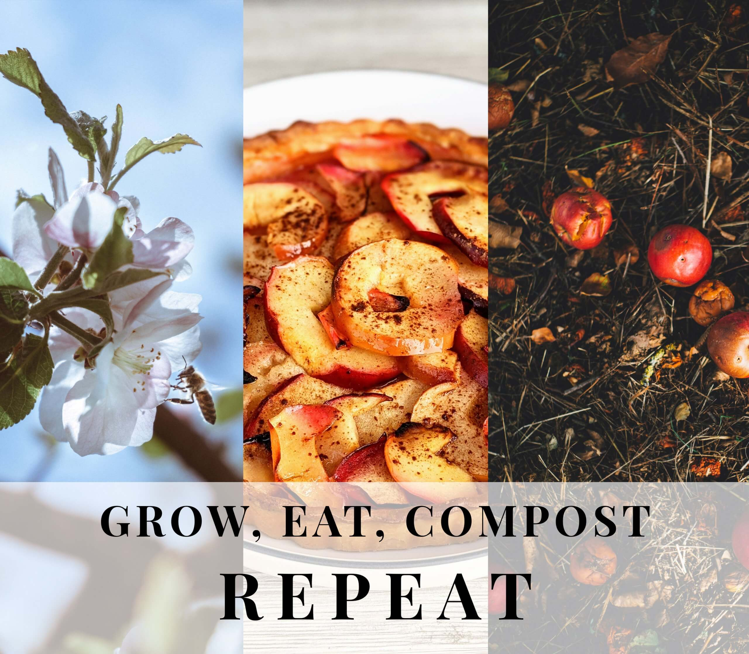 International Compost Awareness Week,